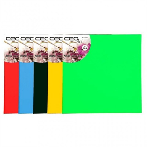 Ceo Art 40x40cm Renkli Tuval Adet Siyah