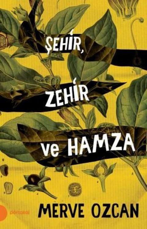 Şehir Zehir ve Hamza - Merve Özcan